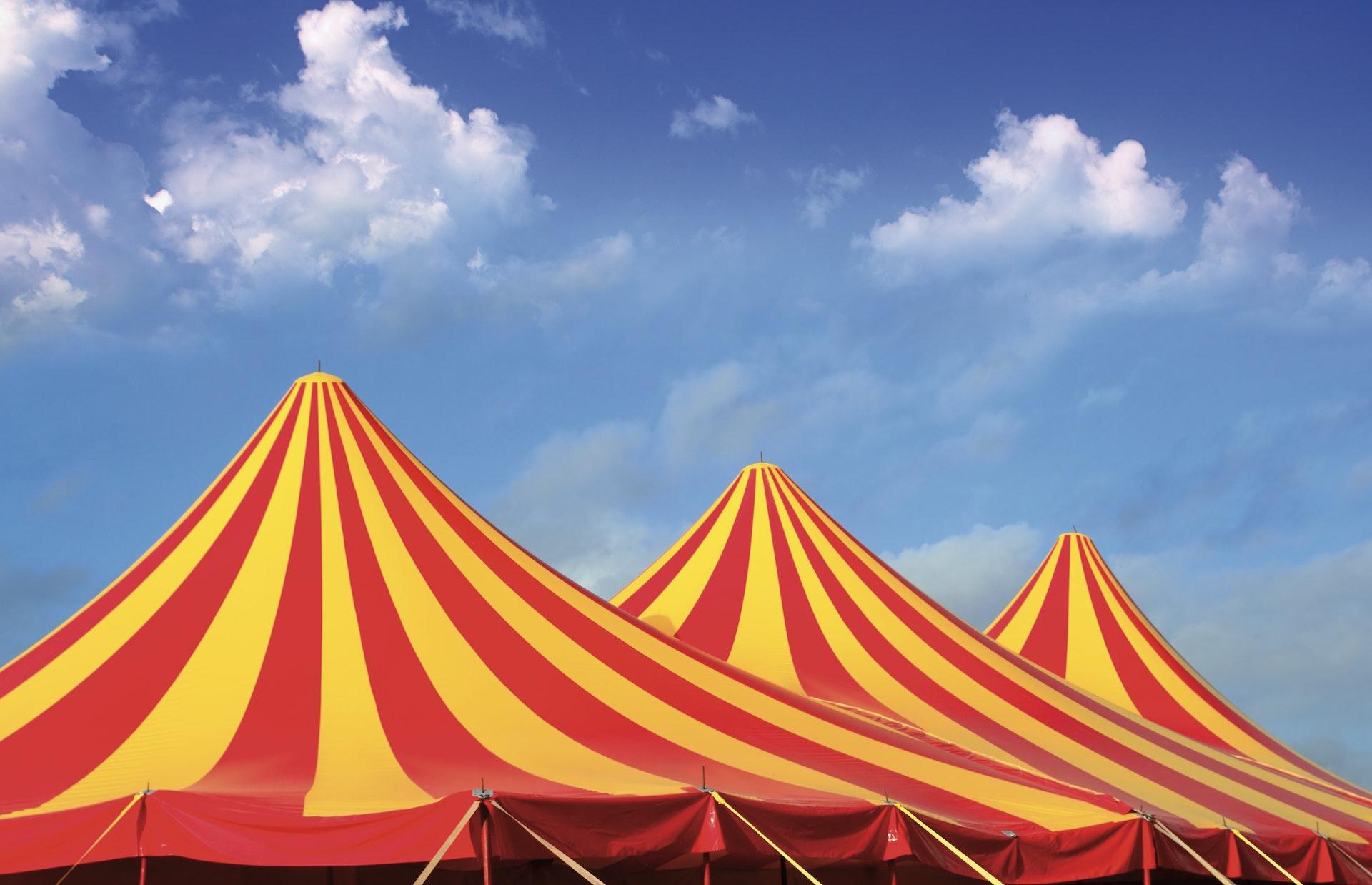 Geniet samen met jouw gezin van een prachtige circusvoorstelling!