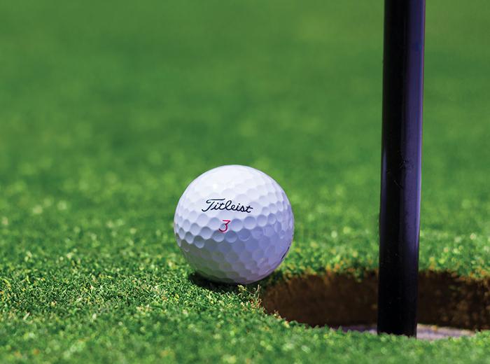 Korting 2 daagse GVB cursusvan Golftotaal Purmerend