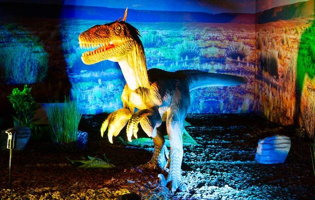 Entreeticket World of Dinos in Den Haag of Den Bosch
