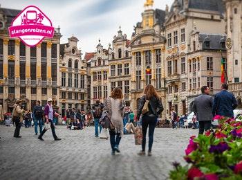 Geniet van een dagje Antwerpen, Brussel of Brugge