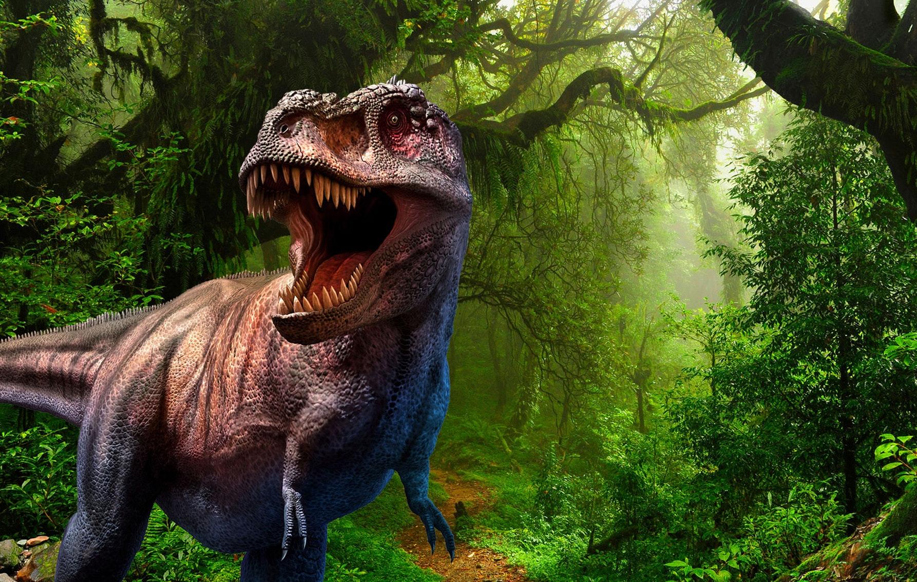 World of Dinos! voor €14