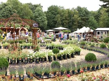 Ga naar het grootste tuinevenement van de Benelux: Bloem & Tuin