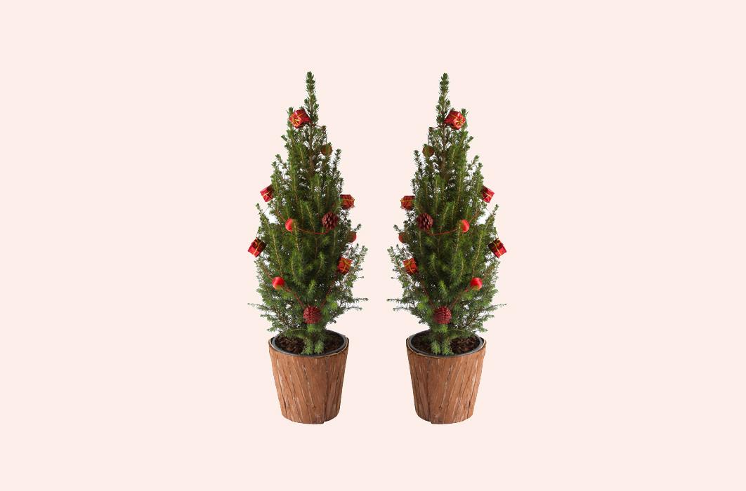 Versierde Kerstboom Kopen Met Korting Tripper Nl