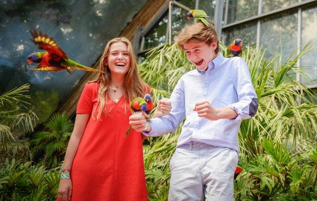 Ontdek een wereld aan vogels in Vogelpark Avifauna