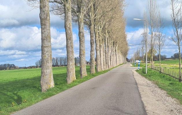 Ontdek Nederland met een autopuzzelroute!