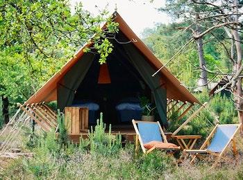 Een avontuurlijke overnachting in Burgers' Zoo Camp
