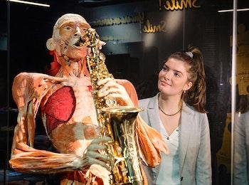 Maak een reis door het menselijk lichaam bij BODY WORLDS!