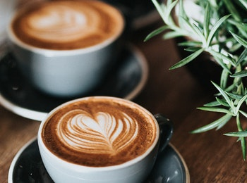 Leer alles over koffie bij Coffee Experiences in Eindhoven