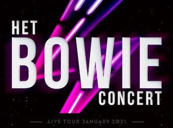 Eerste rang ticket voor Het Bowie Concert