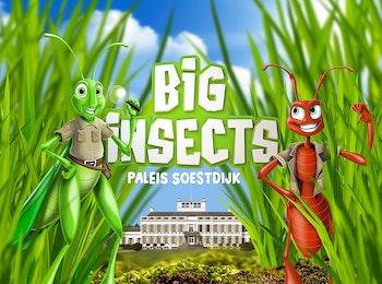 Entreeticket BIG INSECTS bij Paleis Soestdijk in Baarn