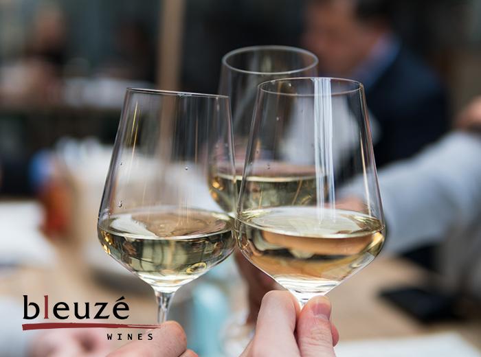 Wijnproeverij en 6 flessen wijn naar keuze van Bleuz� Wines!
